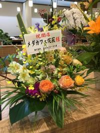 明日 6月1日 メダカフェ OPEN - めだかやドットコム監修 めだか販売店