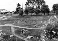 中判フィルムで撮る恵庭道の駅親水公園 - 照片画廊