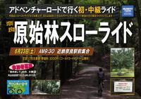 6/23(土)奈良 原始林スローライド - ショップイベントの案内 シルベストサイクル
