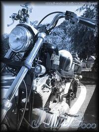 "『 June... 』 - ""Live  to  like  carburetor"""