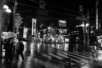雨の柏 - Taro's Photo