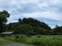 6月になりました - 千葉県いすみ環境と文化のさとセンター