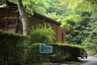 益子 Cafe Fune(カフェ フーネ) ~森の中でのんびりランチ~ - 日々の贈り物(私の宇都宮生活)