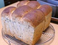山食さんたち - ~あこパン日記~さあパンを焼きましょう