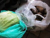 野菜 - さかえのファミリー