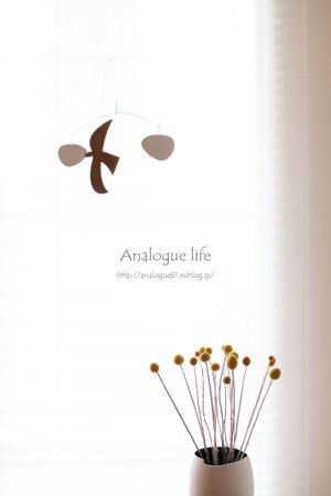 My likes - Analogue life