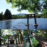 金鱗湖 - NATURALLY