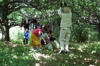 初夏の里山を散策 - 里山を歩く会