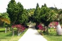宮古島市熱帯植物園 - 沖縄情報