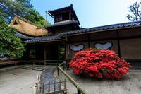 詩仙堂・春の花たち - 花景色-K.W.C. PhotoBlog