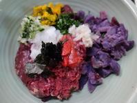 馬いろいろ6日目 紫芋 - ワンワンディッシュ ごちそうさま