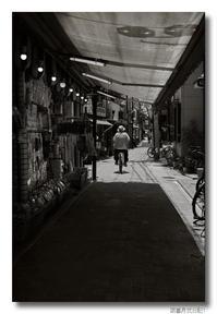 涼暮月弐日記(1)...Leica MM(Typ 246)修行┐(´д`)┌ - M8, M9 & R-D1  for Something I love...323