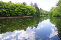 初夏の軽井沢へ① 〜 雲場池と旧軽井沢 - Vivement les vacances! お休みが待ちどおしい
