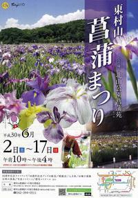 東村山・北山公園の花菖蒲 - あだっちゃんの花鳥風月