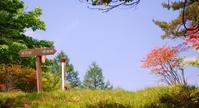 ヤマツツジ - いぐさん流 山と花の写真(富士山)