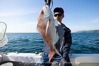 2018/06/02,03の釣果 - 鯛ラバ遊漁船  Miyazaki Offshore Boat Game Marine Frog 2