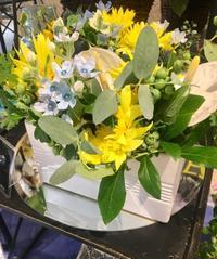 父の日 - ~ Flower Shop D.STYLE ~ (新所沢パルコ・Let's館1F)