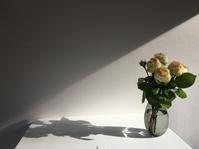 光と影と - 何もしない贅沢