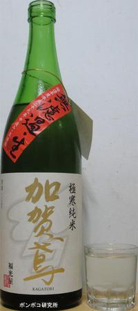 加賀鳶極寒純米無濾過生 - ポンポコ研究所(アジアのお酒)