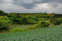 記憶の残像 2018年三浦海岸神奈川県三浦市 - ある日ある時 拡大版
