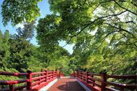 ※ もみじ谷の観月橋を対角線魚眼レンズで撮影 - 気まぐれ写真工房 new