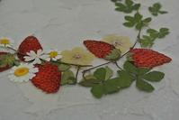 月曜押し花教室、いちごの押し花など - アトリエ・アキ