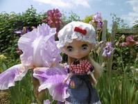 ~今日のお花もアイリス~~ - 雪うさぎのお裁縫箱
