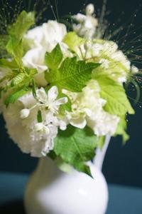 主役を奪ったクレマチスの原種 - お花に囲まれて