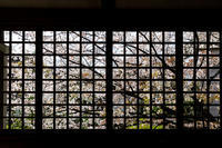 桜咲く京都2018 桜咲く六孫王神社 - 花景色-K.W.C. PhotoBlog