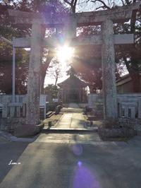 ウーナ49七つの珠14細石神社にて - ひもろぎ逍遥