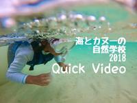 カヌーと海の自然学校〔おまけ〕サンゴ礁の海を探検した2日間をビデオにまとめました! - ねこんちゅ通信(ネコのわくわく自然教室)