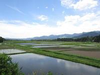 6月の空 - 南阿蘇 手づくり農園 菜の風