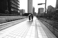 今年はカラ梅雨かぁ〜 - summicron