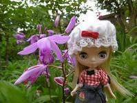 ~今日のお花 紫蘭~ - 雪うさぎのお裁縫箱