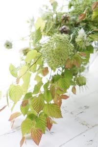 涼やかにグリーンのシャンぺトル&投げ入れ - お花に囲まれて