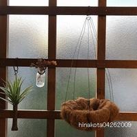 6月のitonowaワークショップは『ココヤシのハンギングバスケット』です☆ - ひなこたのタニクblog。