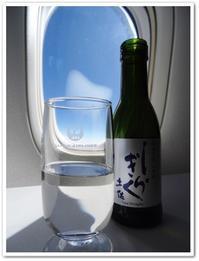 2018年 ハワイ旅行記 帰国日 その3 JALビジネスクラスで日本到着 - Stay Green