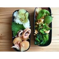 オレの話を聞けぇ~麻婆豆腐BENTO - Feeling Cuisine.com