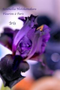 Fleuriste à Parisパリのお花屋さんレッスン - 神奈川湘南ローズメリア西鎌倉/パリ花レッスンと旬なツイードバッグやWire Bijou bagなどハンドメイドレッスン本部校