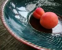 杏子色… - 侘助つれづれ