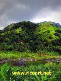 好きなジャマイカの風景 - ジャマイカブログ Ricoのスケッチ・ダイアリ