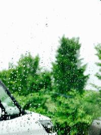 雨の一日 - 今日も気ままに