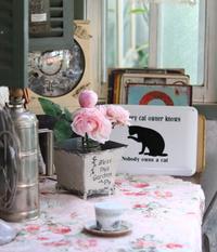 コツコツ邸にゃんこ雑貨編 - ゆきなそう  猫とガーデニングの日記