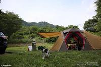 最後のキャンプ@スノーピーク奥日田 - パピヨン小雪の徒然日記