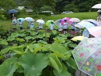 梅雨入り - 千葉県いすみ環境と文化のさとセンター