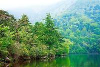 奥日光・湯の湖の新緑 - 光 塗人 の デジタル フォト グラフィック アート (DIGITAL PHOTOGRAPHIC ARTWORKS)