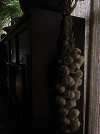 ニンニクの三つ編み - 菜園のある暮らし