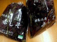 ☆紫蘇ジュースの季節・紫蘇シロップ作り☆ - ガジャのねーさんの  空をみあげて☆ Hazle cucu ☆