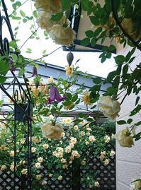 秘密の花園のお宅へ - Fabulous days*