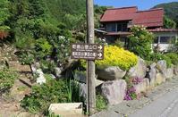 乾徳山(2031m) - 山の花、町の花